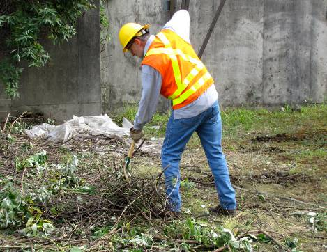 Total Vegetation Management