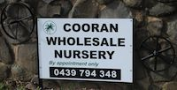 Cooran Wholesale Nursery